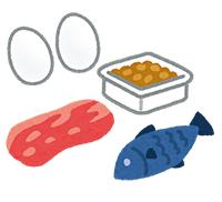 五大栄養素のタンパク質